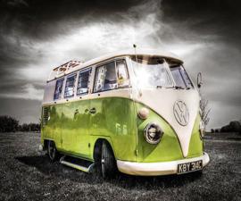 VW T1 busjes groen