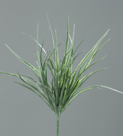 Brynxz Grass-bush
