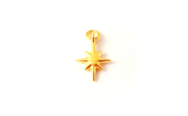 Hanger 'galaxy star' (1 st)