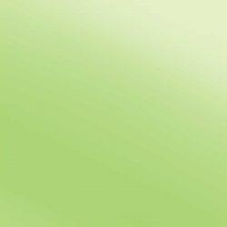 Electric lime E0030