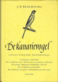 DE KANARIEVOGEL – J.H. BEEKMAN BZN – jaren '60