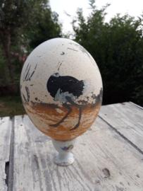 Struisvogelei