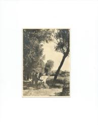 PRENTBRIEFKAART - LANDSCHAPSERIE Nr. 6 - HAAREN (N.B.) - ca. 1946