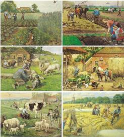 'Het Volle Leven' (Cornelis Jetses) – 6 stuks - 1990-1997
