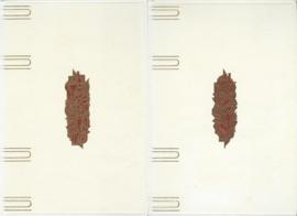 Baedeker voor de vrouw – SET van 2 delen 'Alles over koken' – 1968 - 1