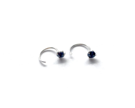 Earhooks onyx