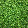 Galaxy Glitter Extraterrestrail Green