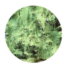 Powereffect Exterior Green 15g