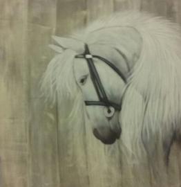 Schilderij paard