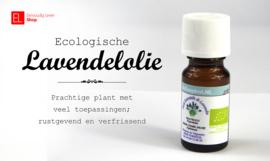Olie - Lavendel
