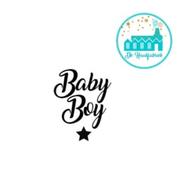 Big Labels 8 cm x 3 cm 'Baby Boy' transverse