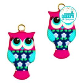 Charm Owl Pink / Aqua 23 mm x 12 mm