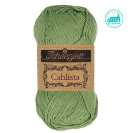Cahlista Sage Green (212)