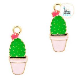 Bedel Cactus 25 mm x 9 mm