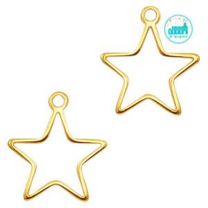 Gold Star Metal Label 24 x 21mm