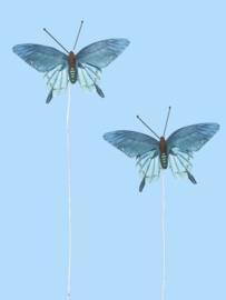 Vlinders XIV - Decoratie