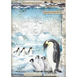 Penguins - Rijstpapier A4