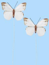 Vlinders III - Decoratie