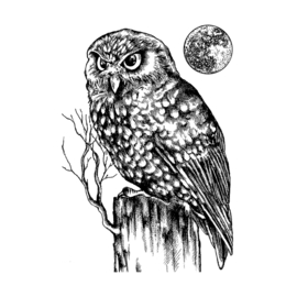 Owl and Moon - Clingstamp