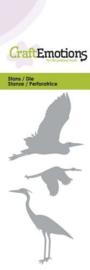 Watervogels - Stans