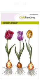 Tulip  - Clearstamp