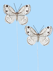 Vlinders IV - Decoratie