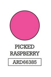 Picked Raspberry