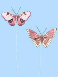 Vlinders VI - Decoratie