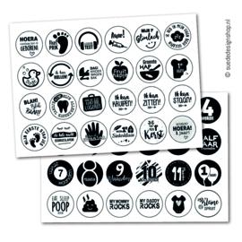 Stickers | Baby's eerste jaar (48 stuks)