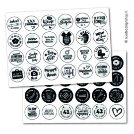 Stickers | Hoogtepunten Zwangerschap | 48 stuks