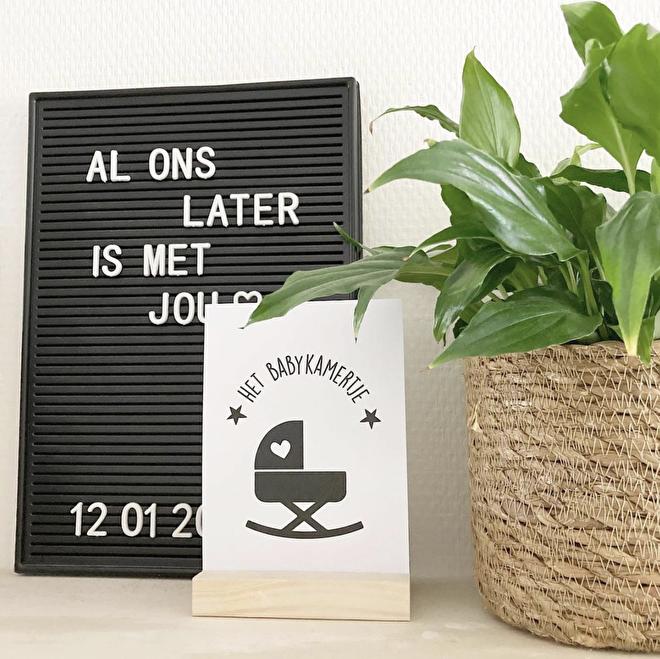 Kaartenset | Hoogtepunten Zwangerschap - Suede design shop
