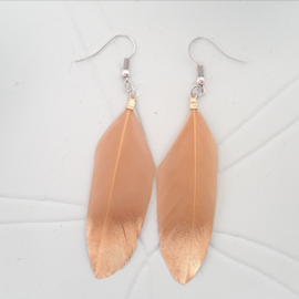 Feather satin Brown
