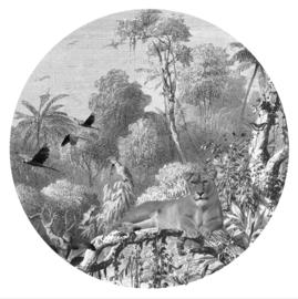 FBRK. Jungle