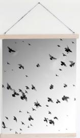 Tuinposters Vogels