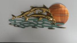 5 dolfijnen met zon.