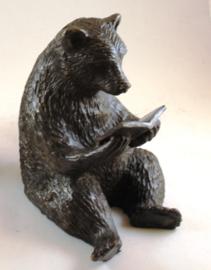 Boekensteun beer
