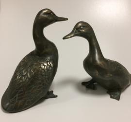 Eendenpaar brons