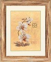 Lanarte patroon Drie Orchideeen compleet borduur pakket