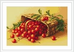 Basket of cherry