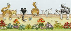 Animals - Lazy cats