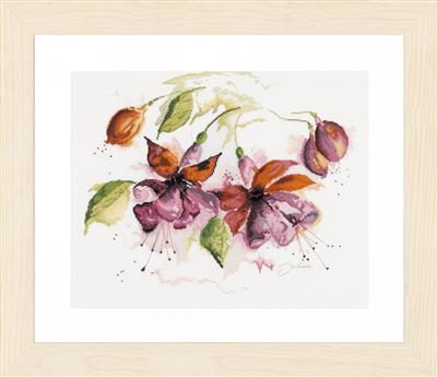 Fuchsia in aquarel