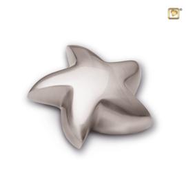 Ster urn zilverkleurig mat