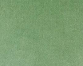 336 Kussen velours Mist Green 45x45