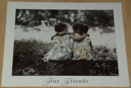TRUE FRIENDS 1 POSTER