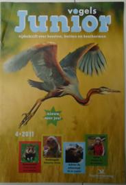 10/ Junior vogels € 0.75