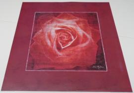 POSTER POETISCHE ROOS 1 50 x 50 cm