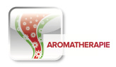 Ariston Aromatherapie