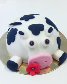 Cakebox dieren boltaartjes