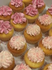 Doosje mini cupcakes