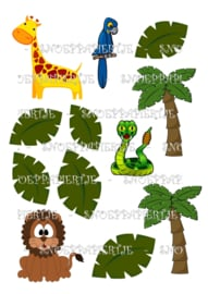 Jungle dieren